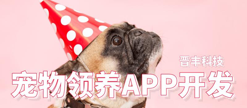 寵物領養APP 開發解決方案及功能—晉豐科技